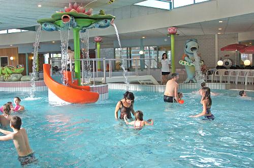 Zwembad de meerval wijchen